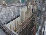 展卖结构一体化免拆模板