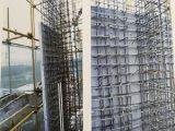 结构一体化免拆模板直销